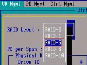 dell_raid06
